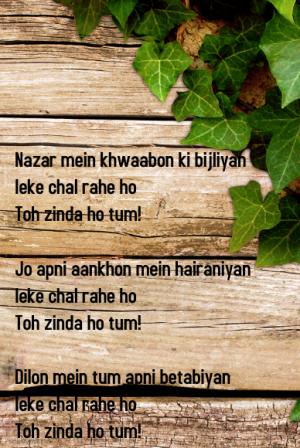 Khaab ZNMD